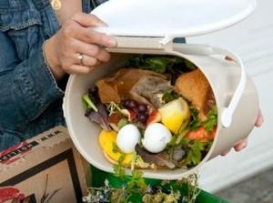 desperdicio-alimentos
